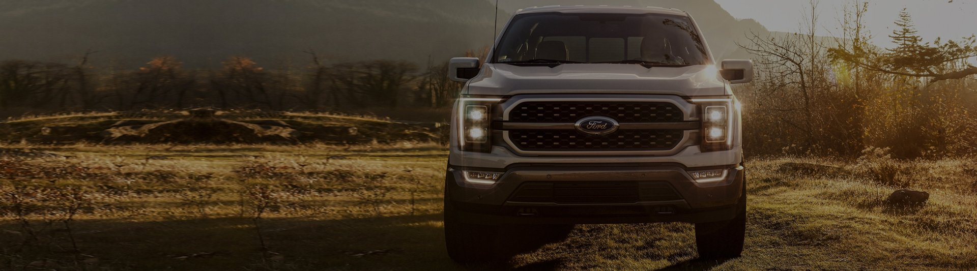 Laquerre Ford-banner1